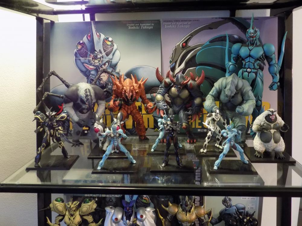 Guyver Shelf 002.jpg