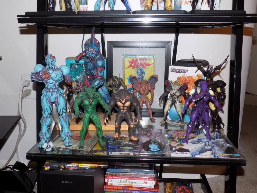 Guyver Shelf 004.jpg